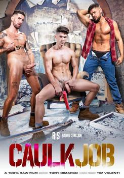Caulk Job