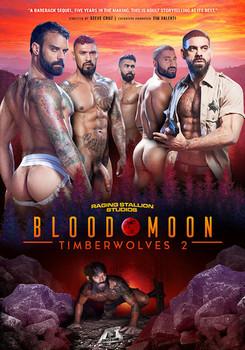 Timberwolves 2